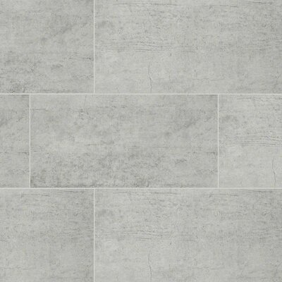 Cemento Novara 12 x 24 Porcelain Field Tile in Gray