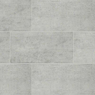 Cemento Novara 12 x 24 Porcelain Tile in Gray