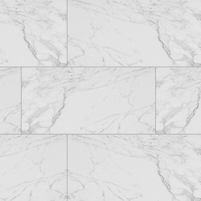 Carrara 12 x 24 Porcelain Field Tile in White