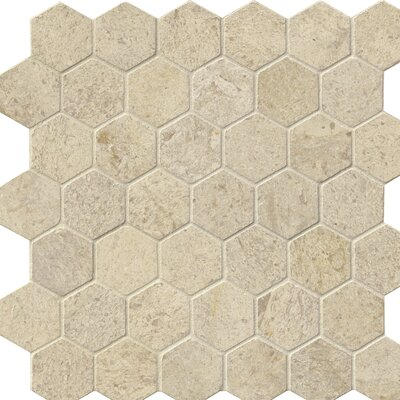 Hexagon Honed 2 x 2 Limestone Mosaic Tile in Beige