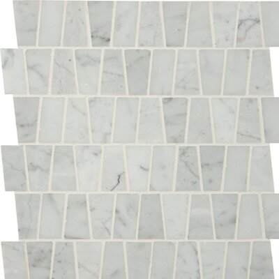 Polished Marble Mosaic Tile in White