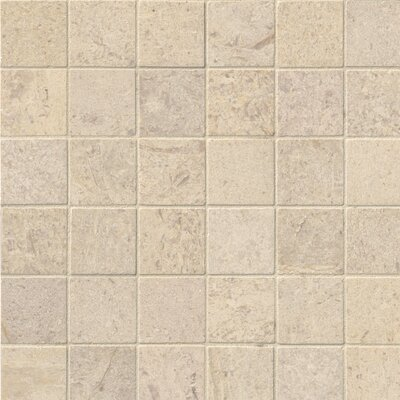 Honed 2 x 2 Limestone Mosaic Tile in Beige