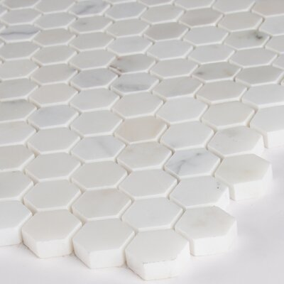 Calacatta Gold Hexagon Mounted 1 x 1 Marble Mosaic in White