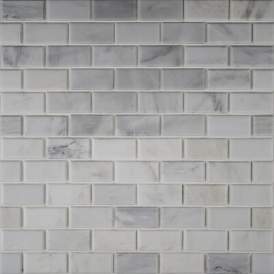 Arabescato Carrara Greecian Mounted 2 x 4 Marble Mosaic Tile in White