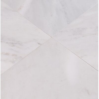Arabescato Carrara 24 x 24 Marble Field Tile in White (Set of 3)