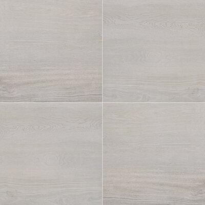 Paver Palmwood 24 x 24 Porcelain Tile in Gray (Set of 3)