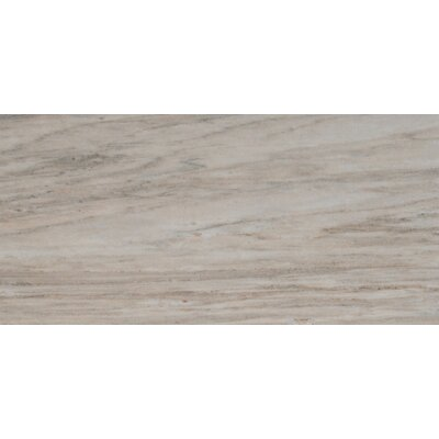 Palisandro Polished 12 x 24 Marble Mosaic Tile in Gray