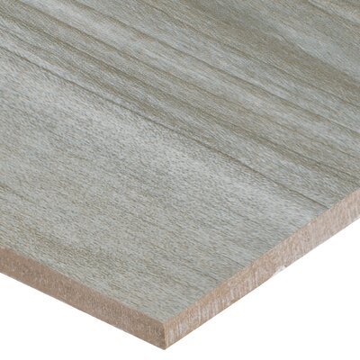 Carolina Timber 6 x 36 Ceramic Wood Look Tile in Gray