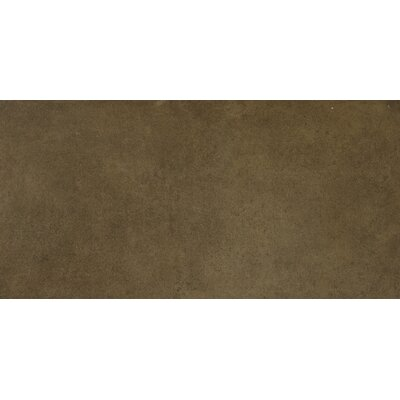 Capella 12 x 24 Porcelain Field Tile in Brown