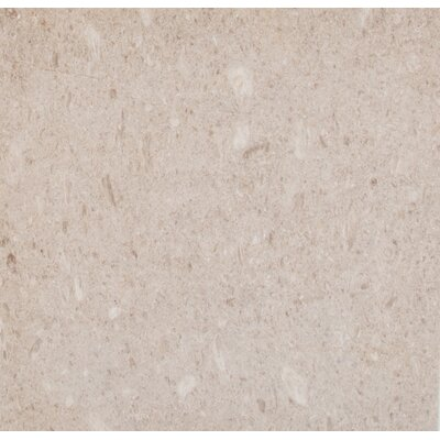 Coastal 18 x 18 Limestone Field Tile in Beige