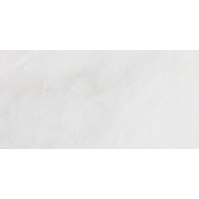Arabescato Carrara 6 x 12 Marble Field Tile in White