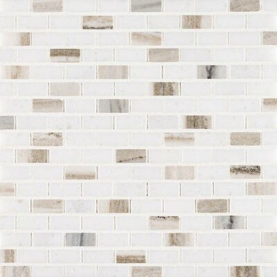 Palisandro Mini Brick Pol Marble Mosaic Tile in Gray/Beige