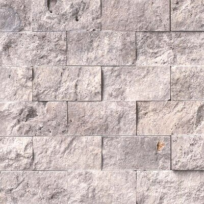 2 x 4 Travertine Splitface Tile in Gray