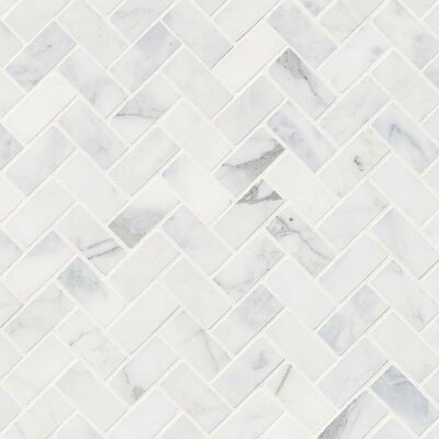 Calacatta Cressa Herringbone Honed Marble Mosaic Tile in White