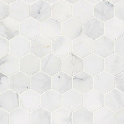 Calacatta Cressa Hex Honed 2 x 2 Marble Mosaic Tile in White