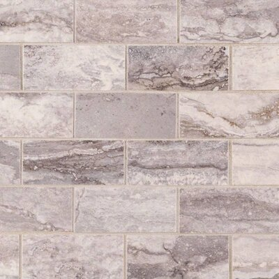 Bernini Pietra Carbone Polished 2 x 4 Porcelain Subway Tile in Gray