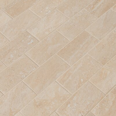 Aria 2 x 4 Porcelain Mosaic Tile in Beige