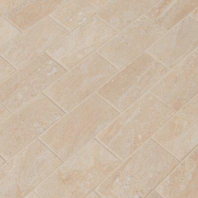 Aria 2 x 4 Porcelain Mosaic Tile in Beige