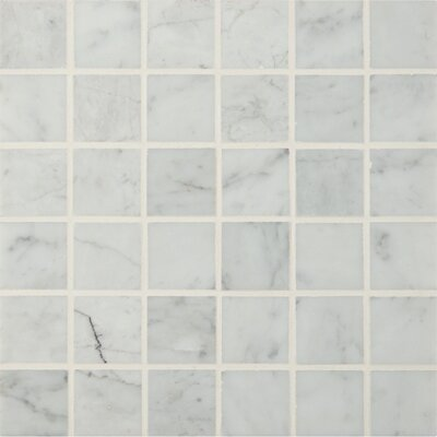 Carrara 2 x 2 Marble Mosaic Tile in White