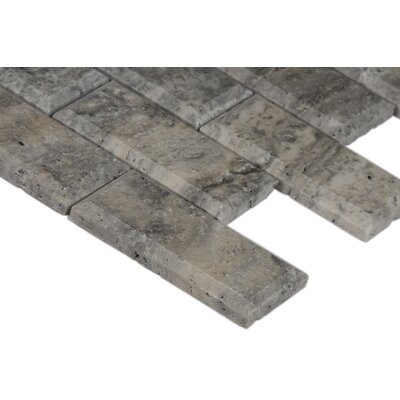 Silver Travertine 2 x 4 Beveled Travertine Mosaic Tile in Gray
