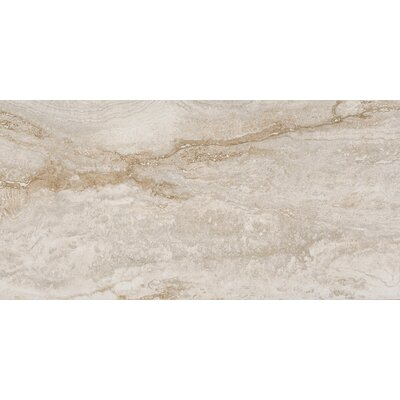 Bernini Bianco 12 x 24 Porcelain Field Tile in Cream/Warm gray