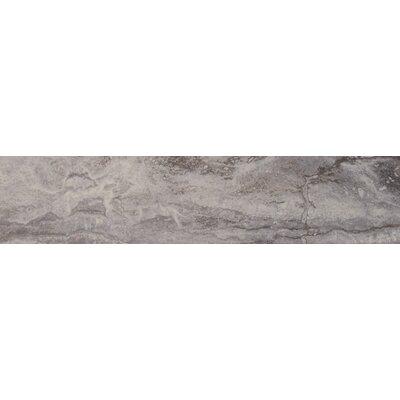 Pietra Bernini 4 x 18 Porcelain Field Tile in Gray