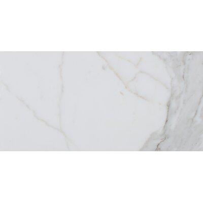 Calacatta 12 x 24 Natural Stone Field Tile in White