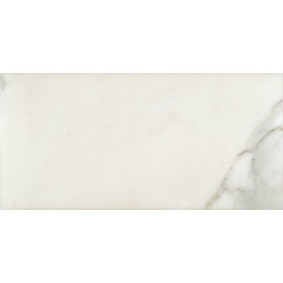 Calacatta 6 x 12 Natural Stone Field Tile in White