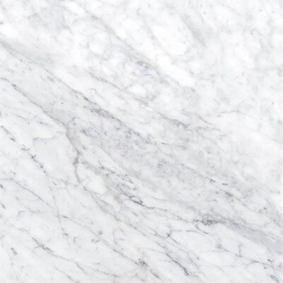 Carrara 12 x 12 Natural Stone Field Tile in White