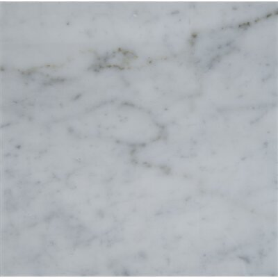 Carrara 18 x 18 Natural Stone Field Tile in Gray