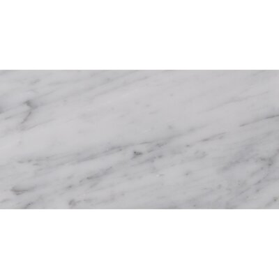 Carrara 6 x 12 Natural Stone Field Tile in White/Gray