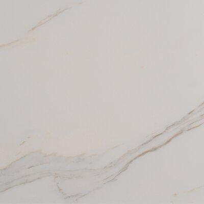 Adella Calacatta 18 x 18 Porcelain Field Tile in White