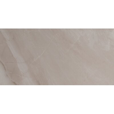 Adella Gris 12 x 24 Porcelain Field Tile in Gray