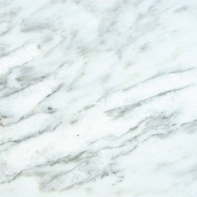 18 x 18 Marble Field Tile in Arabescato Carrara