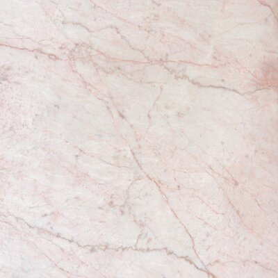 "12"" x 12"" Polished Marble Tile in Cherry Blossom"
