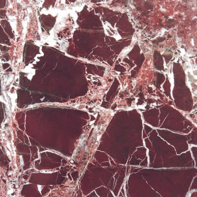 "12"" x 12"" Polished Marble Tile in Rosso Levanto"
