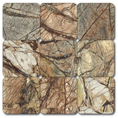 "4"" x 4"" Tumbled Marble Tile in Caf Forest"