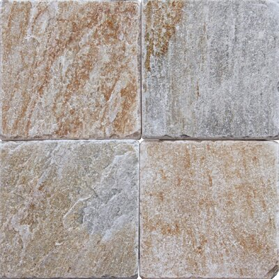 6 x 6 Natural Stone Field Tile in Multi