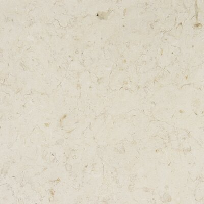 12 x 12 Limestone Field Tile in Jerusalem Bone