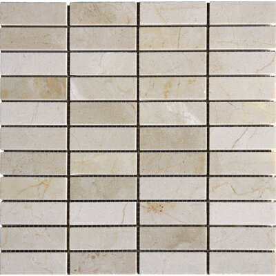 "12"" x 12"" Polished Marble Tile in Crema Marfil"
