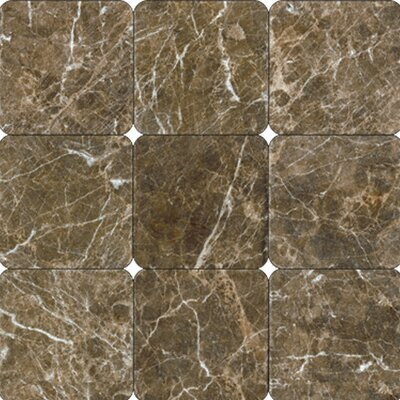 "12"" x 12"" Polished Marble Tile in Laurent Brown"