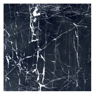 """12"""" x 12"""" Polished Marble Tile in China Black"""