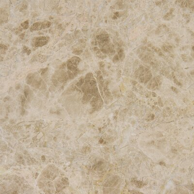 "18"" x 18"" Polished Marble Tile in Emperador Light (Set of 9)"
