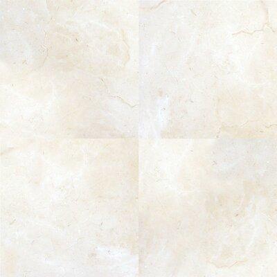Pietra Marfil 18 x 18 Porcelain Field Tile in Beige