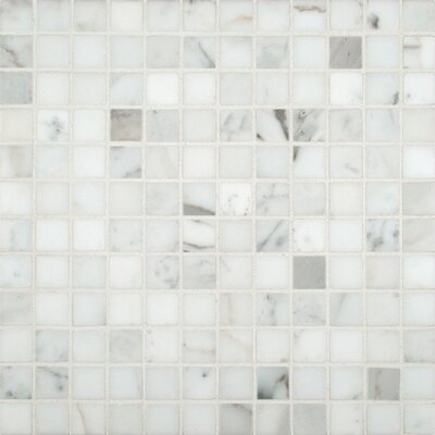 Calacatta Gold 1 x 1 Marble Mosaic Tile in White