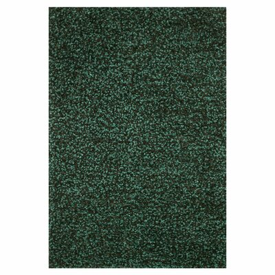 Caddigan Hand-Woven Emerald Area Rug Rug Size: Rectangle 76 x 96