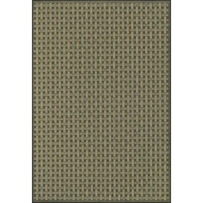 Capri Moss Indoor/Outdoor Area Rug Rug Size: Rectangle 24 x 39