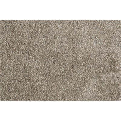 Callie Shag Hand-Tufted Light Brown Area Rug Rug Size: 36 x 56