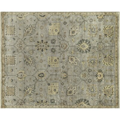 Kehoe Persian Hand-Woven Gray Area Rug Rug Size: Rectangle 12 x 18