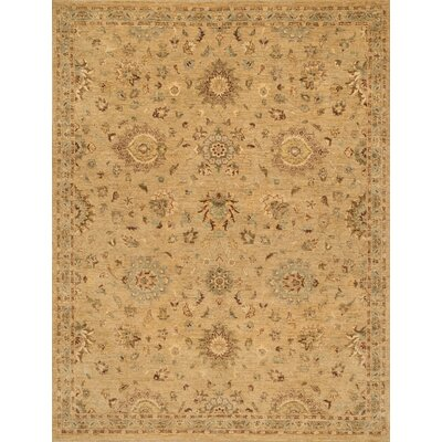 Majestic Hand-Knotted Brown Area Rug Rug Size: Rectangle 56 x 86